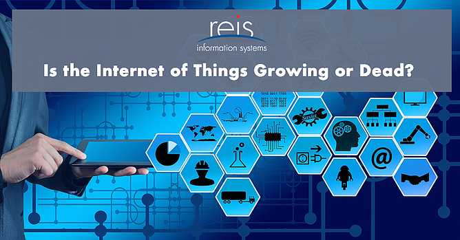iot growing or dead